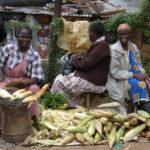 Maisverkauf am Straßenrand